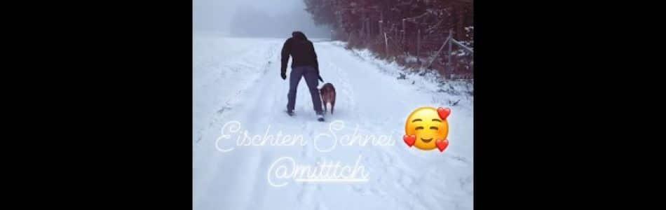 Maisy-Horatio-Welpen-Cooper-im-Schnee-Beitragsbild.jpg
