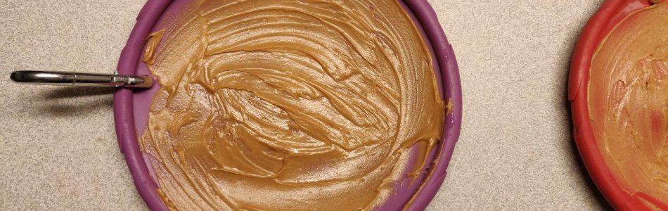How-to-beschäftige-einen-Aussie-Erdnussbutter-Frisbee-Beitragsbild.jpg