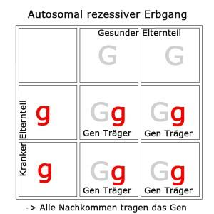 autosomal-rezessiv-3