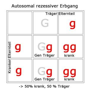 autosomal-rezessiv-4